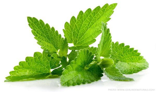 a greek and unani herbal peppermint